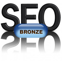 SEO - Search Engine Optimization - Bronze Pkg 3-Domains - $2000.00