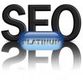 SEO - Search Engine Optimization - Platinum Pkg 9-Domains - $8000.00