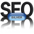 SEO - Search Engine Optimization - Silver Pkg - $500.00