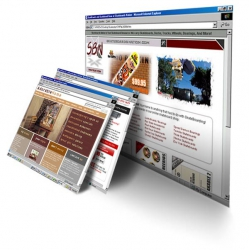 $895.00  - RAPID 3 DAY DELIVERY WEBSITE